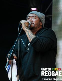 California Roots 2014