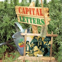 Capital Letters - Vinyard