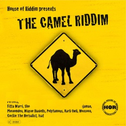 Camel Riddim